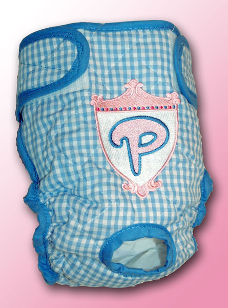 Princess Shield on Blue Gingham